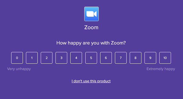 Zoom Pulse Survey